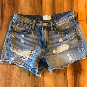 Gilded Intent shorts